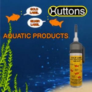 Hutton Aquatics